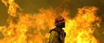 Число лесных пожаров в Сибири увеличивается