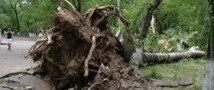 Сильнейший ураган и его последствия в Благовещенске ликвидируют пожарные, спасатели и полицейские.
