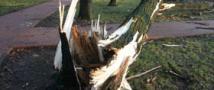 Ущерб, нанесённый ураганом Калининградской области, насчитывает порядка 50 миллионов рублей.