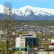 В Дагестане террористы подорвались при попытке заложить бомбу.