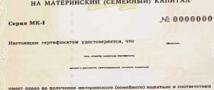 В Башкирии у женщин украли материнский капитал.