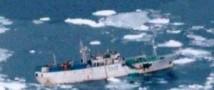 «Ирина» без экипажа дрейфует в Тихий океан