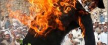Бунт из-за сожженного Корана не утихает. Есть жертвы