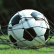 В тюрьму на семь лет за взятки сядут футбольные арбитры