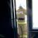 Во время пожара в одной из московских квартир погибли пять человек