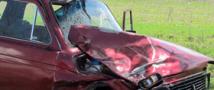 В Кабардино-Балкарии пьяным водителем сбиты четыре человека