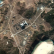 В КНДР возобновлено строительство атомного реактора