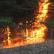 В Забайкалье пожаром охвачены более тысячи гектаров тайги
