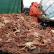 В Охотском море задержаны два браконьерских корабля