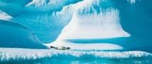 Угроза возникновения большой азоновой дыры в Арктике не подтвердилась