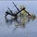 В Охотском море затонуло российское судно