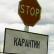 На Алтае семь человек заболели сибирской язвой