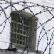 Заключенный в волгоградской колонии во время свидания задушил свою жену