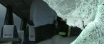 Во Владимирской области в результате аварии с автобусами погибли три человека