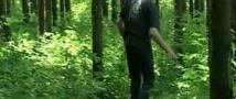 Заблудившиеся школьники провели сутки в лесу