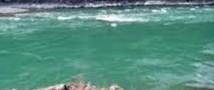 На Алтае курортом станет крупнейшее искусственное озеро