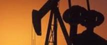На фоне роста запасов в Америке дешевеет нефть
