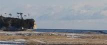 Землетрясение у побережья Фукусимы