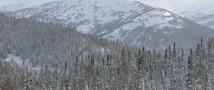 Всех пропавших в Хакасии туристов нашли живыми
