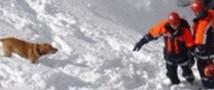 На курорте в Австрии под снежной лавиной погиб турист из России