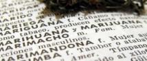 Студенты гуманитарных ВУЗов чаще «технарей» употребляют наркотики