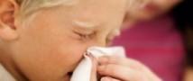 Количество закрытых из-за ОРВИ и гриппа липецких школ выросло с 17 до 26