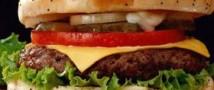 Заведения быстрого питания набирают популярность во Франции