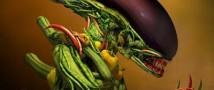ГМО овощи на российских прилавках?