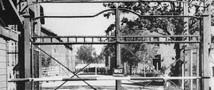 50 надзирателей концлагеря Освенцим будут судить