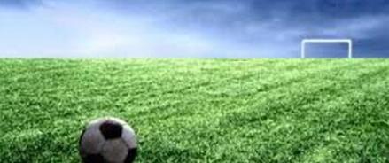 Шведские футболисты прервали игру, чтобы поймать вора