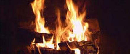 Похищенными картинами из Роттердама распалили печь