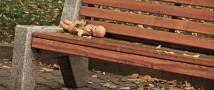 Школьница убила 5-летнюю подругу