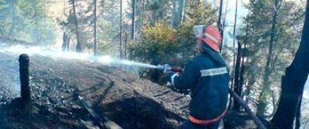 32 гектара леса загорелись в Архангельской области