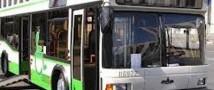 Водитель автобуса зажал женщину до смерти