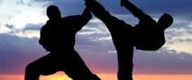 В Санкт-Петербурге будут проводиться Всемирные игры боевых искусств