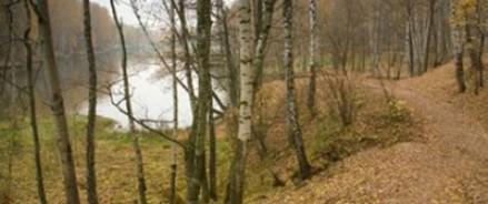 В Тропаревском парке женщине вырезали молочные железы
