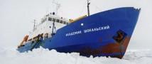 «Академик Шокальский» начал сам выбираться из ледяного капкана