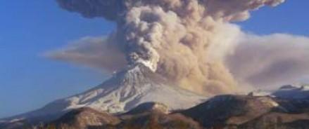 Главной причиной уменьшения популяции китов ученые назвали извержения камчатских вулканов