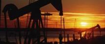 Добыча нефти Сирией сократилась на 96%
