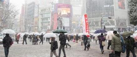 В результате сильного снегопада в Японии погибло 11 человек