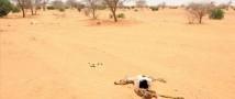 В 2014 году ожидаются сильные засухи