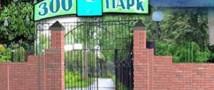 Виновник ДТП в зоологическом парке был задержан правоохранителями