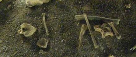 Подросток из Америки нашел останки древних индейцев