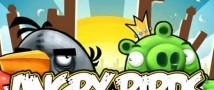 В Свердловской области пройдет турнир по мотивам онлайн игры Angry Birds