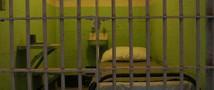 Сибирский «человек-паук» проведет шесть лет за решеткой