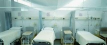 Шведская клиника для душевнобольных была атакована змеями