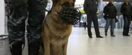 В аэропорту Магадана эвакуировали пассажиров