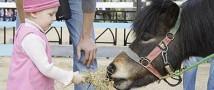 В Челябинске прокуратура требует закрыть контактный зоопарк
