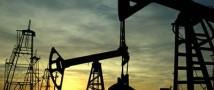 На фоне событий в Ираке цены на нефть достигли девятимесячного пика