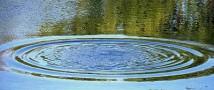 В Ростовской области подросток утонул в пруду